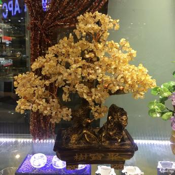 黄晶聚宝发财树 94000415